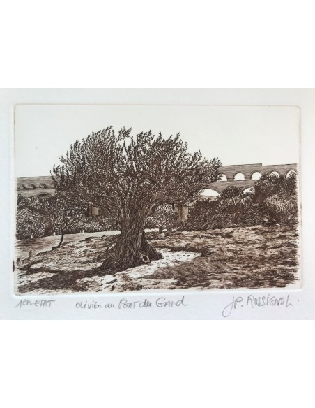Olivier au Pont du Gard