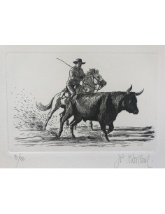 Gardian camarguais et Taureau